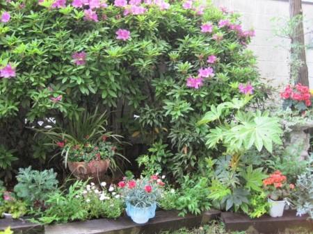 樹々は伸びやかに繁り、花々は咲き誇る